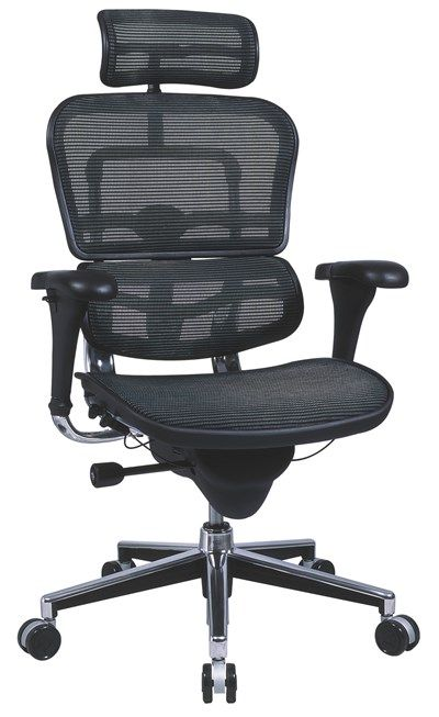 Ergohuman Mesh Ergonomic Chair with Headrest