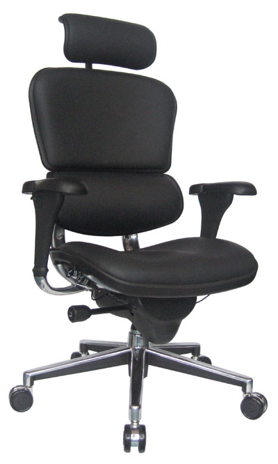 Leather Ergohuman Chair